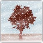 論語 己 冬
